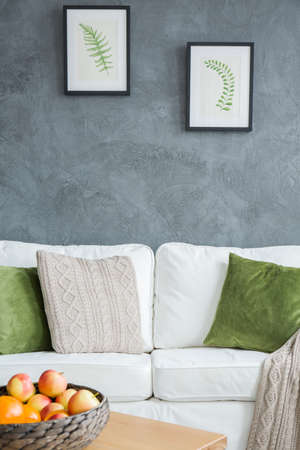 Garden style living room with white sofa and green decoration