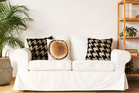 Living room with white couch, decorative pillows, bookcase and plant Banco de Imagens