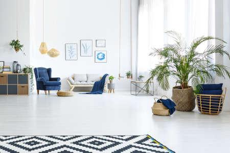 Witte woonkamer met bank, blauwe leunstoel en decoratieve plant Stockfoto