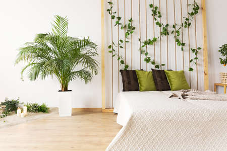 Dreamy bedroom with decorative plant, double bed, rope wall Stock fotó