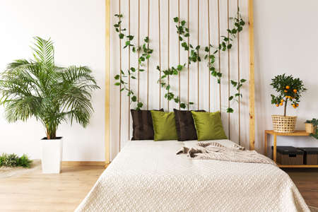 Trendy bedroom with rope wall, double bed and plant
