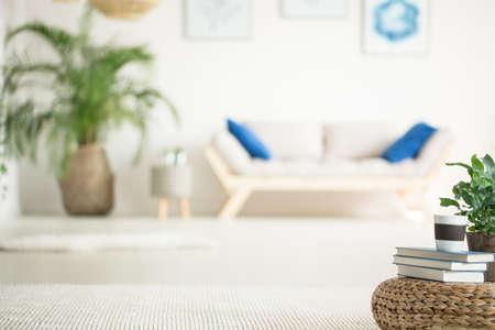 Stijlvol, wit appartement met een houten bank, planten- en rotan-poef