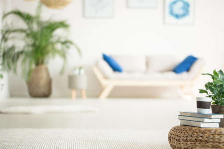 Stylish, white apartment with wood sofa, plant and rattan pouf