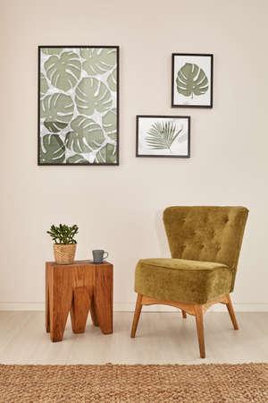 Groen en bruin appartement met houten meubels en monstera-accessoires Stockfoto