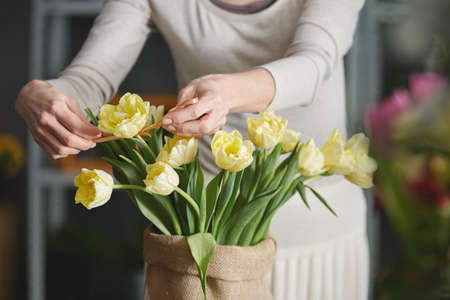 Woman florist decorating yellow tulips in sack, close up Stock Photo