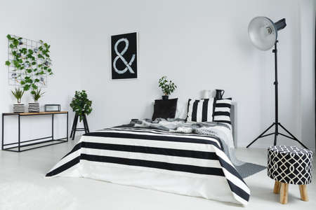 Black and white bedroom with house plants and floor lamp