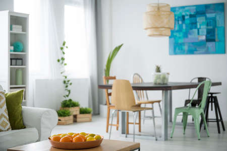 open floor plan: Modern, white apartment with communal table, chairs, plants and sofa