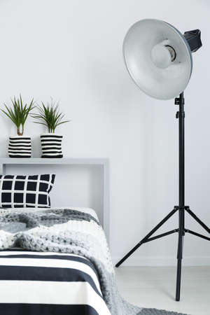 Comfortable bed with soft blanket, house plants, and floor lamp