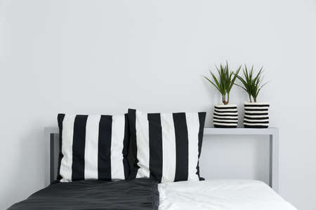 Double bed, decorative, black and white cushions, and house plants