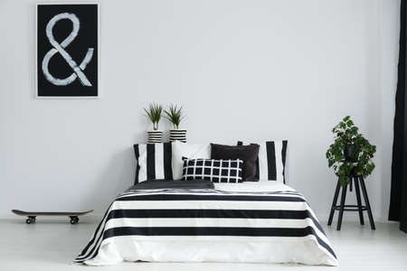 Skateboard and house plants in stylish, black and white bedroom Stock Photo