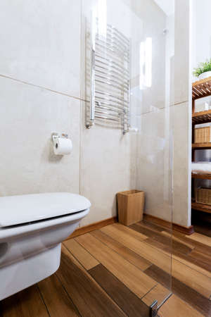 Minimalist bathroom with toilet seat and wooden floor