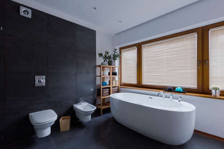 Modern dark bathroom with toilet and freestanding bathtub Stok Fotoğraf