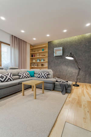 Spacious grey living room with comfortable sofa and small coffee table Zdjęcie Seryjne - 86102810