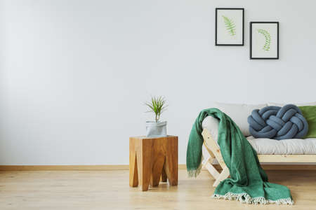 Green wool blanket on designer sofa in living room Stok Fotoğraf