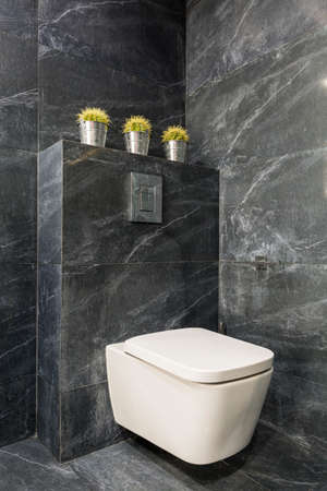 bathroom design: Modern bathroom with white toilet seat and grey stone tiles