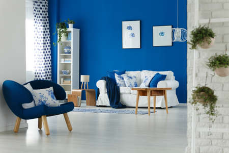 Trendy blue and white living room interior design