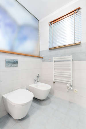 White minimalist bathroom with toilet, bidet, heater, window with blinders and blurred painting