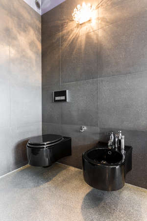 Spacious bathroom interior with black toilet and bidet, dark walls and floor