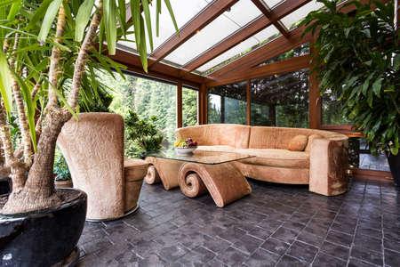 화분에 담긴 식물, 유약을 바른 지붕과 독특한 벨벳 가구가있는 세련된 오렌지