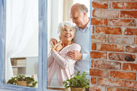 Senior elegant happy husband and wife hugging by the window Stok Fotoğraf