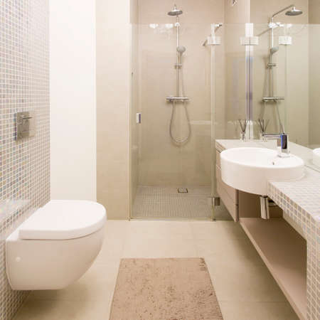 Spacious light bathroom with glass shower cabin, toilet and basin