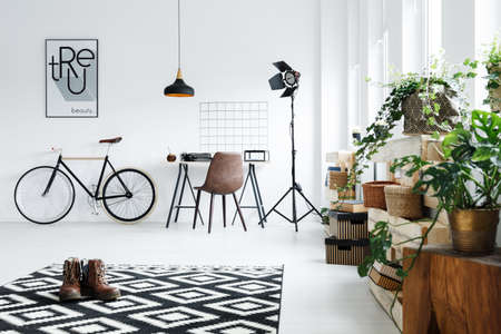 Black and white room with plants and modern accessories Stock Photo