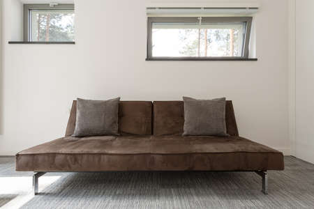 amenities: Minimalistic brown divan with cushions in a bright interior