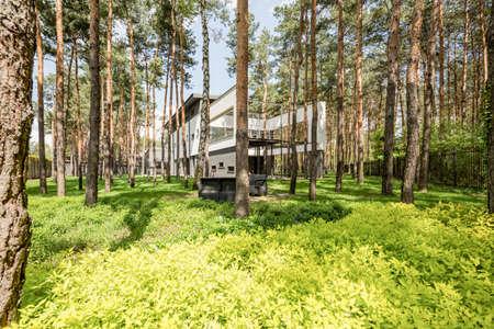 Casa moderna y elegante escondida entre el bosque Foto de archivo - 81652919