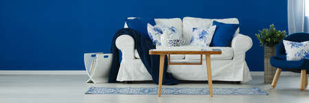 Blue and white living room with rustic accents Banco de Imagens
