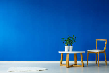Small wooden white table with potted fresh plants on it Stockfoto
