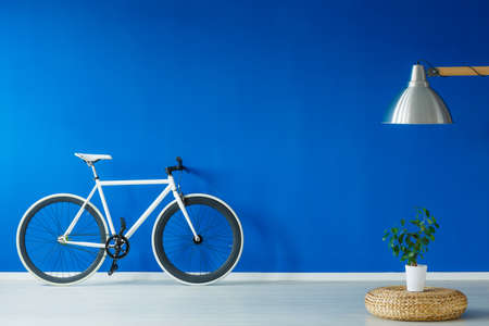 Black and white bicycle standing in a blue living room