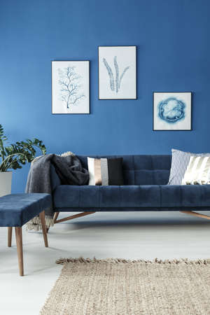 Elegant retro sofa in stylish blue room