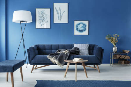 Blue stylish elegant retro living room with sofa