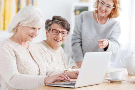 Older smart woman using new laptop on a meeting