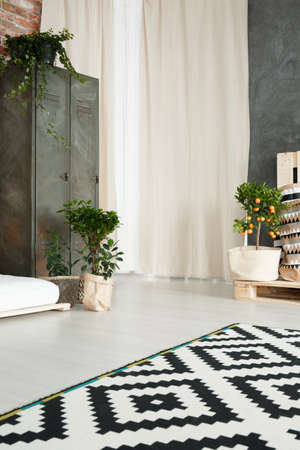 White and green design of modern living room with patterned carpet 版權商用圖片