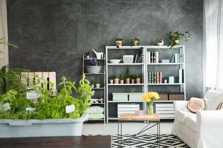 Grey and white decor of spacious loft interior