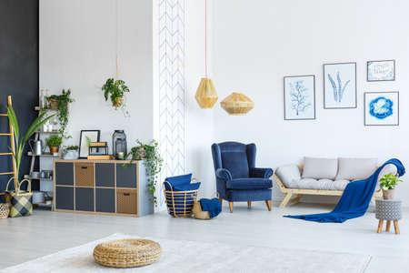 Modern white and blue living room with plants and posters