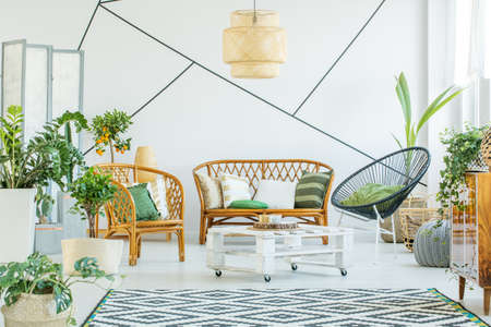Plants in modern white living room with rattan accessories