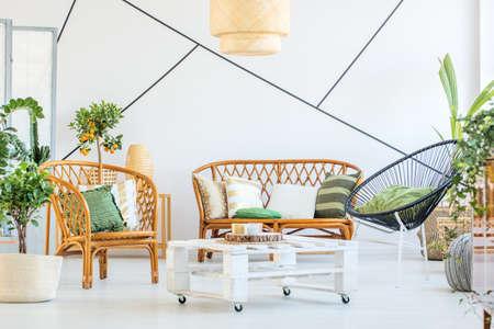 벽에 현대 가구, 식물 및 장식용 테이프가있는 트렌디 한 거실 스톡 콘텐츠