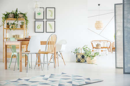 Modern dining room with plants in spacious white apartment Stok Fotoğraf