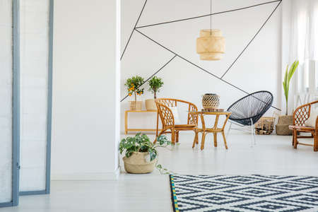 Up-to-date white living room with rattan accessories