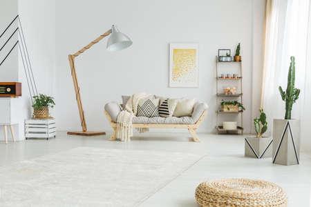 白のモダンなリビング ルームの新鮮な緑の植物 写真素材