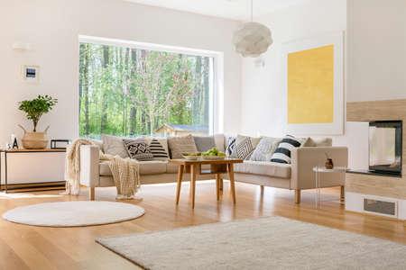 Comodo divano bianco con coperta e cuscini in salotto moderno Archivio Fotografico - 82322629