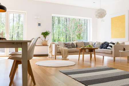 White and wooden decor of spacious trendy living room Stock Photo