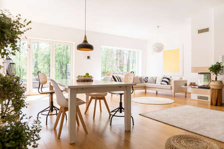 Planten in ruime witte woonkamer verbonden met eetzaal Stockfoto