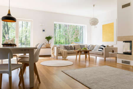 Stylish design of spacious living room connected with dining hall Stock Photo