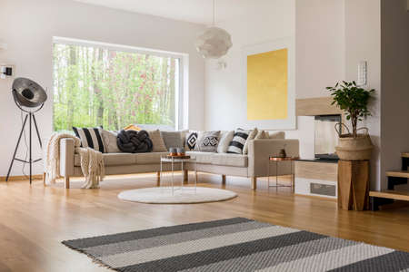 Scandinavian style design of spacious modern living room with white walls Reklamní fotografie