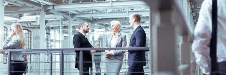 Businesswoman talking with two, elegant investors, panorama