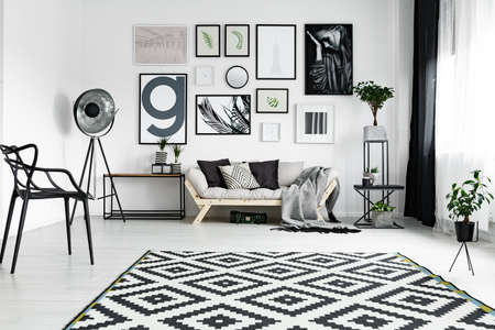 Fancy furniture in spacious black and white lounge