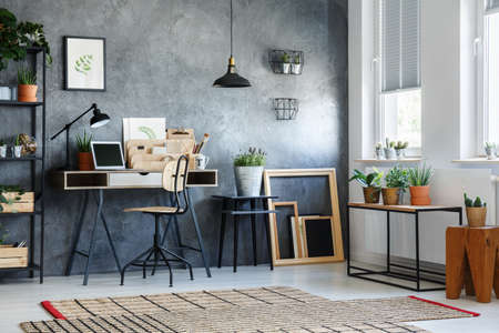 Room with modern decor, potted plants and wooden empty frames